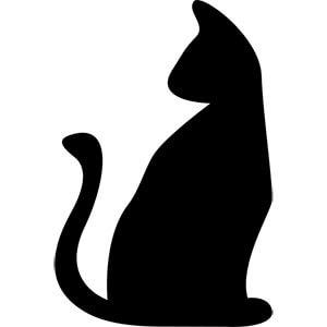 https://lookwhatthecatbroughtin.org/wp-content/uploads/2020/02/adult-cat.jpg